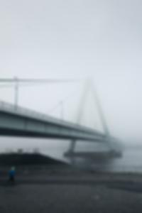 قائمة نجوم البورنو الاشقر